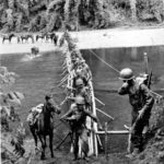 CAPTION:  On March 18, 1944, men and animals from the 2nd Battalion cross the Tanai River on a bamboo bridge built by Kachin tribesmen, working with the Office of Strategic Services, near the village of Ning Awng.