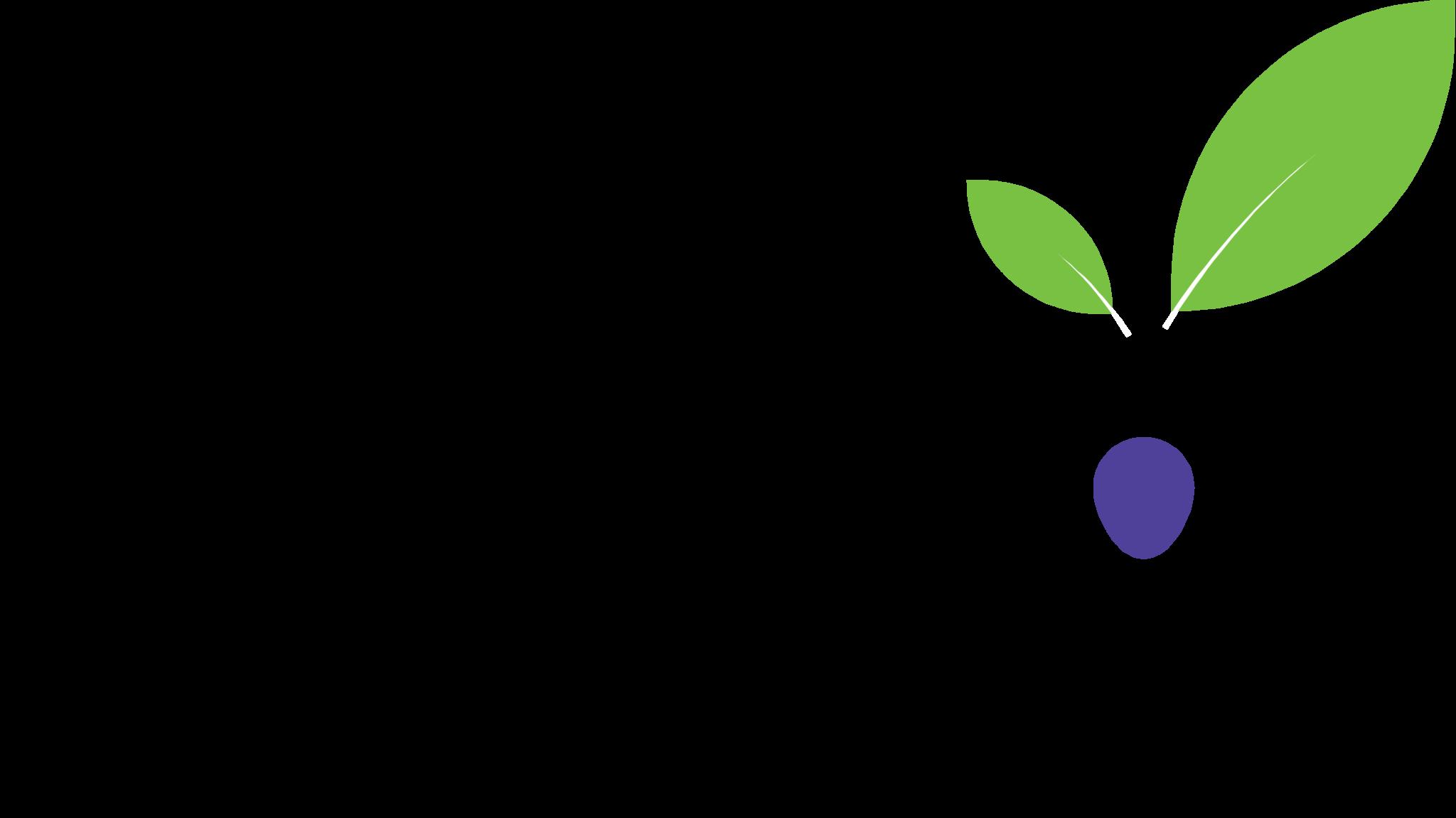 Indigo Education Company logo