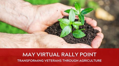 May Rally Point image from NVMM